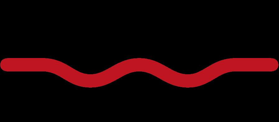 logo swissflex